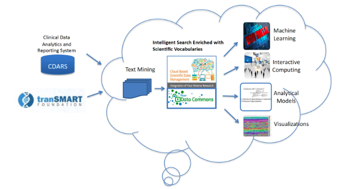Clinical Data Analytics and Reporting System