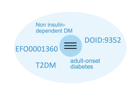 A selection of the many synonyms for the Type II Diabetes-related gene, ABCC8